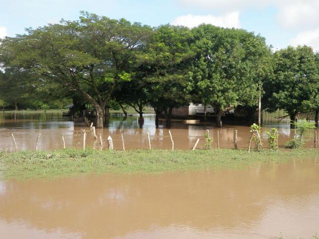 A lot of houses sat on land that was flooded
