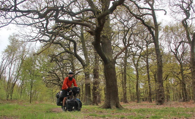 Me riding in Sherwood Forest. :)